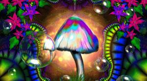"""¿Qué pasa en tu cerebro cuando consumes """"hongos mágicos""""?"""