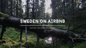 Suecia se enlistó gratis en Airbnb