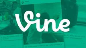 Bug en el archivo de Vine expuso datos privados de miles de usuarios