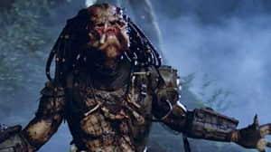 Call of Duty: Modern Warfare - en el juego se esconde Depredador